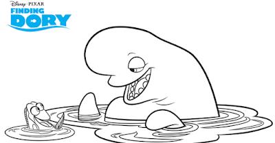 bailey beluga dory