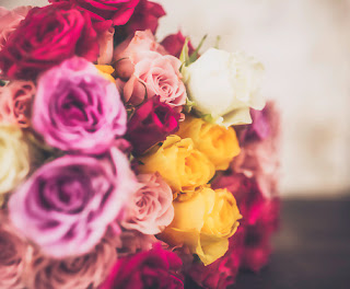 The TOP 7 Most Romantic Flowers For Girls