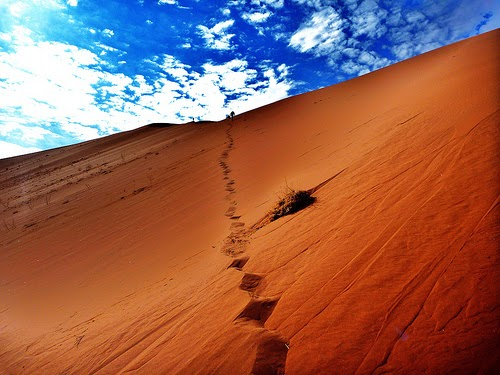 Namib Desert of the African Country Namibia