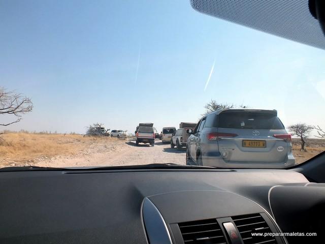 conducir por la izquierda namibia