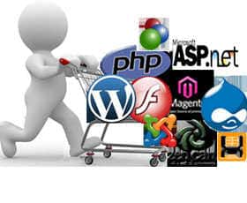 Website Development/Training Institute gurgaon, delhi Faridabad