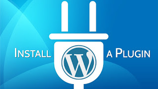 What is wordpress plugin ?