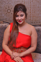Payal Ghosh Looks Stunning in Red Half Shoulder Gown 049.JPG