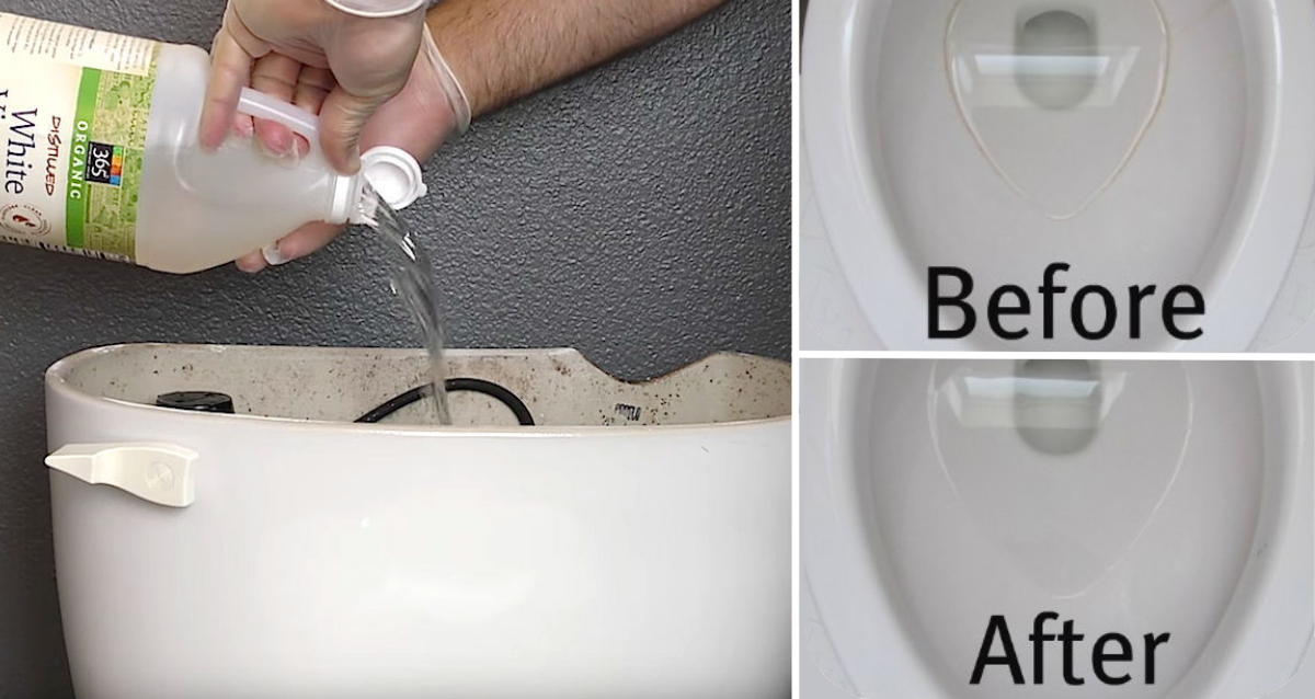 Interesting How To Clean Toilet Tank With Vinegar And Baking Soda ...