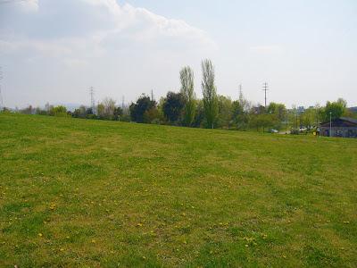 枚方市 山田池公園・芝生の丘