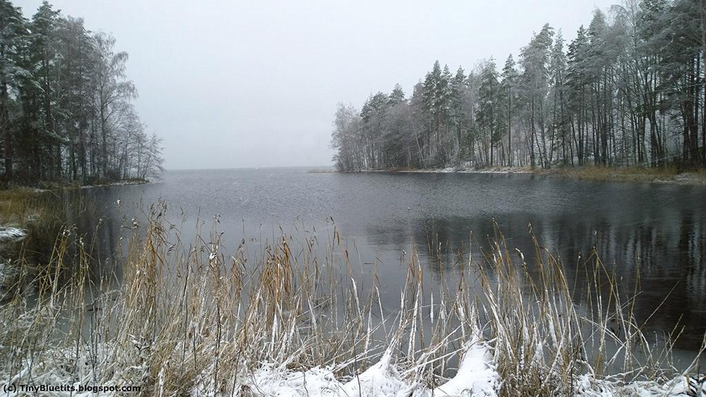 Lumisadetta