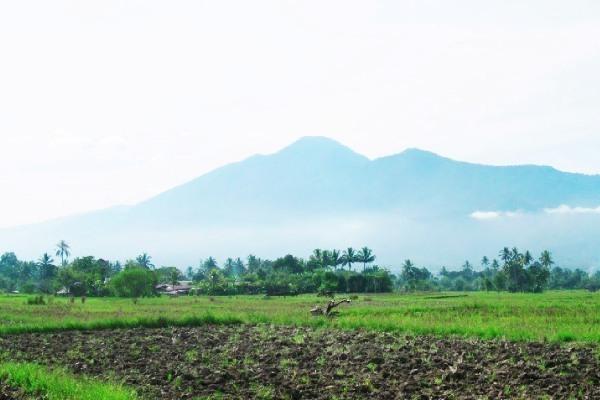 Gunung Nokilalaki