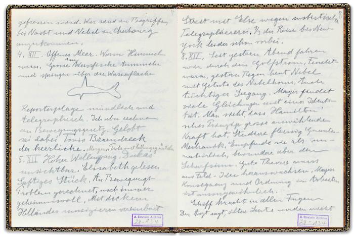 Albert Einstein, diario, appunti, notes, pensieri, scrittura, scarabocchi