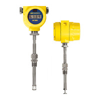 FCI Thermal Mass Flow Meter