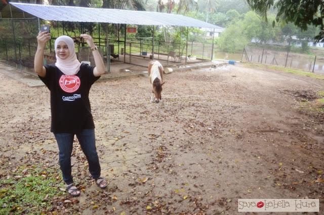 agrofarmstay, penginapan murah di Melaka