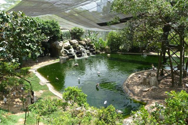 Park ptaków w stolicy Malezji