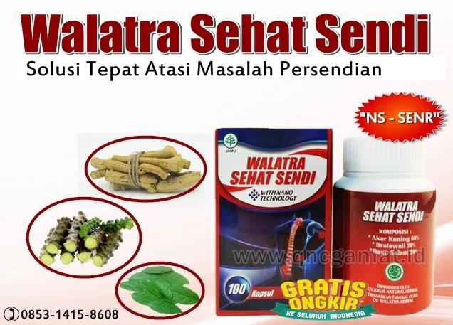 Obat Herbal Penyakit Rematik Paling Ampuh