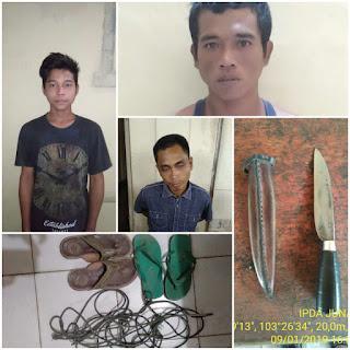 Polsek Batang Hari Leko Ringkus Komplotan Pencuri Hewan Ternak