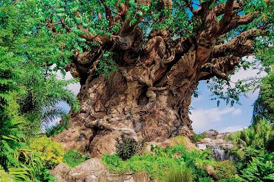 Árvore da Vida_Animal Kingdom