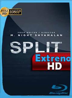 Split (Fragmentado) (2017) HD [1080p] Latino [GoogleDrive]