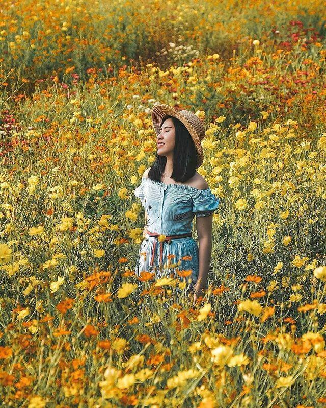 6 spot foto instagramable baru di Gunung Kidul, Jogja - Foto nyonyokecil