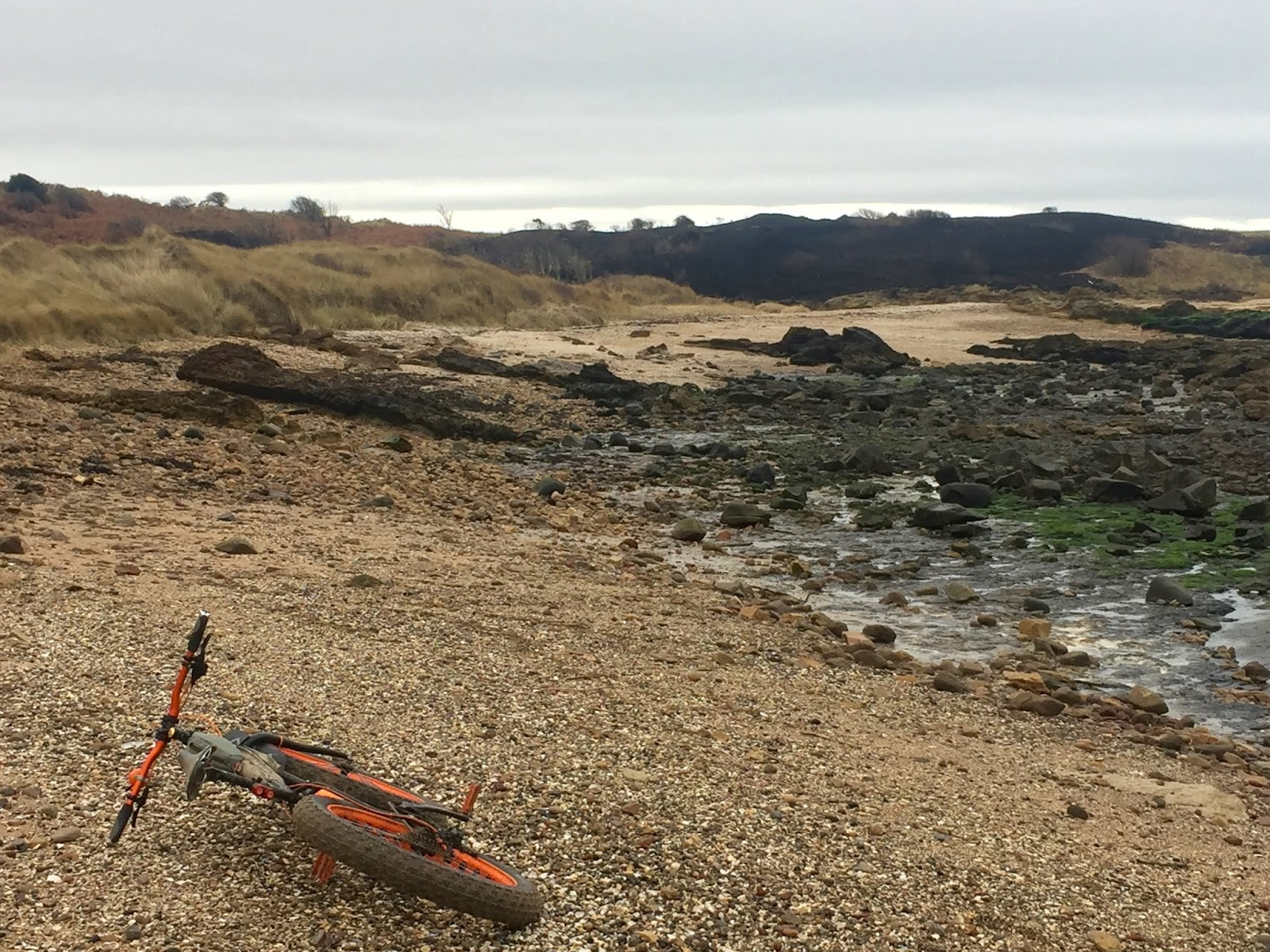 coastrider: Gullane Point cycle