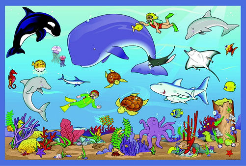 Miss Turci's First Grade Blog: What Is Your Favorite Ocean ...
