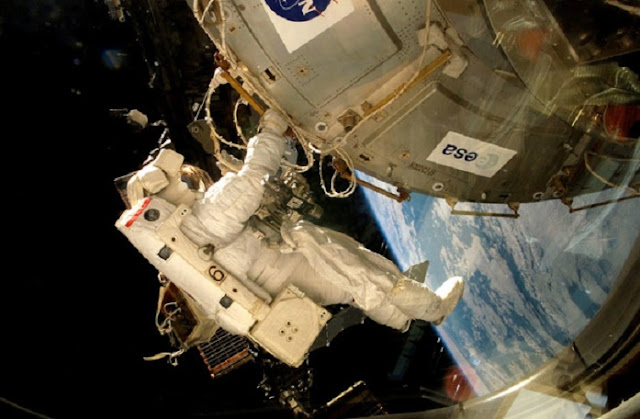 Antarctic fungi survive Martian conditions on the International Space Station