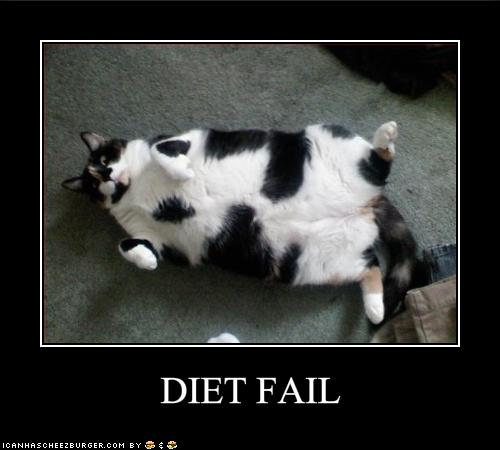 Humor Inspirational Quotes: Fat Girl On Her First Diet: Weekend FAIL