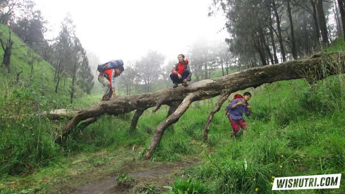 Bulak Peperangan Gunung Lawu via Candi Cetho