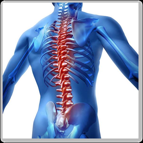 Ce este chiropractica?