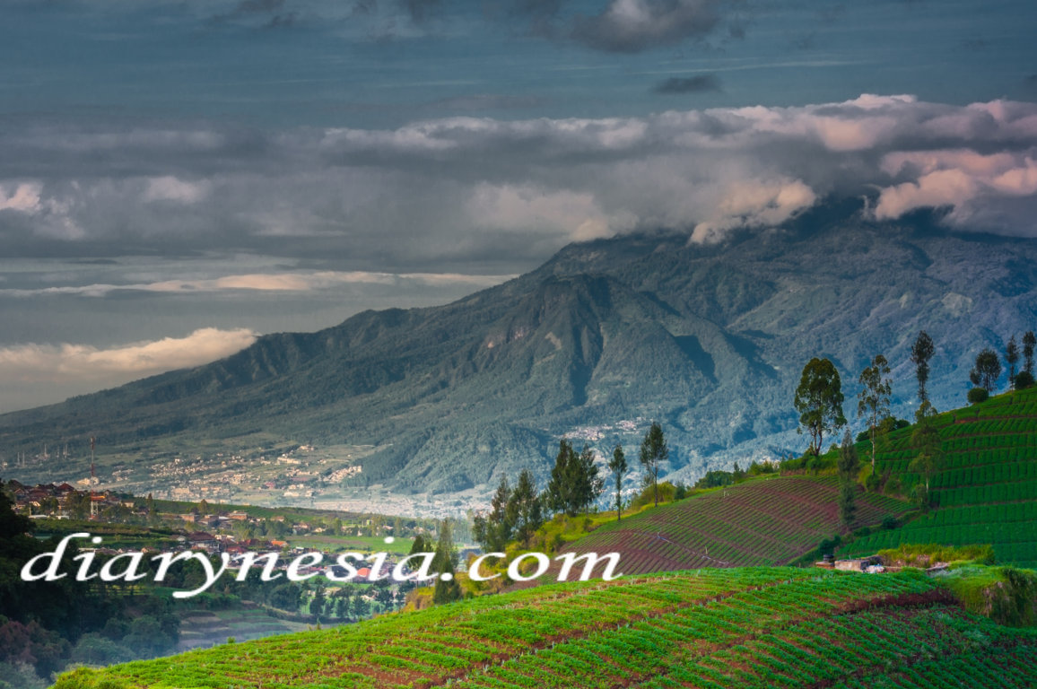 Malang Tourism, East Java  Tourism, Best Tourist Attractions in Malang City, diarynesia