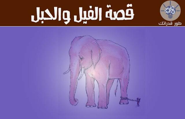 الفيل والحبل