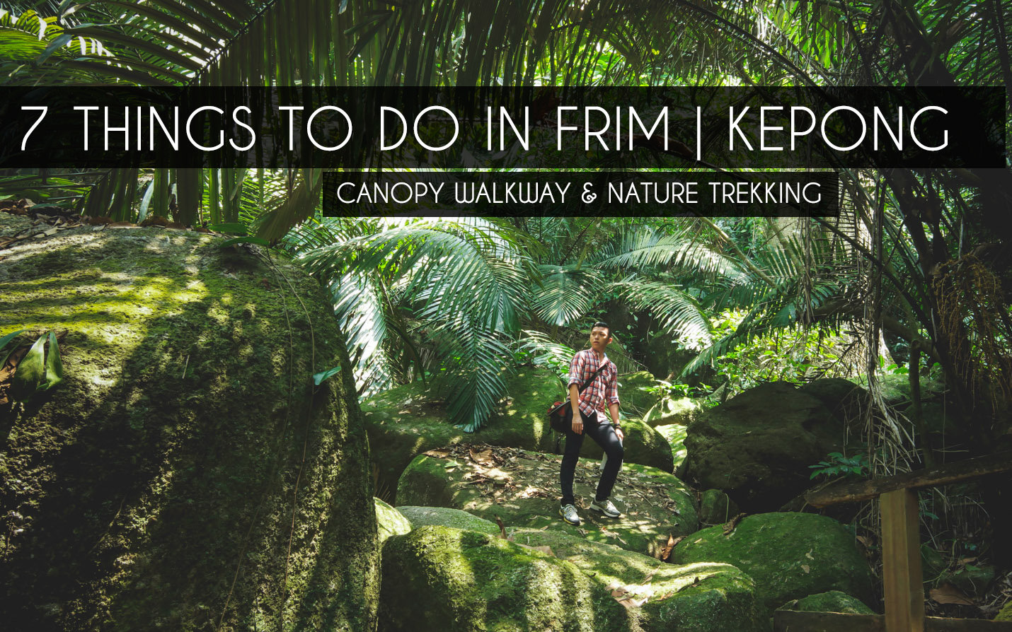 7 Things To Do In Frim Kepong Canopy Walkway Jogging Nature Trekking Capture Precious Moments