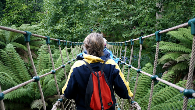The Lost Gardens of Heligan Cornwall Jungle rope bridge
