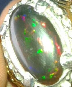 black opal bledug