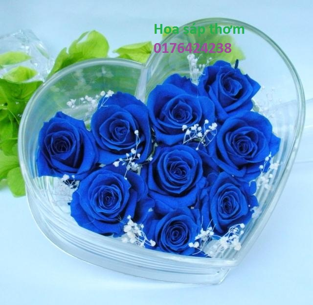 Hoa hong sap thom vinh cuu o Hang Quat