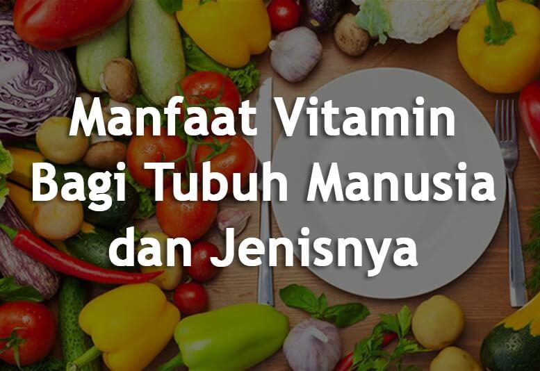 Fungsi Penting Vitamin