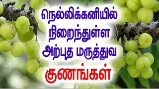 Nellikaayil Ulla Atputha Kunankal