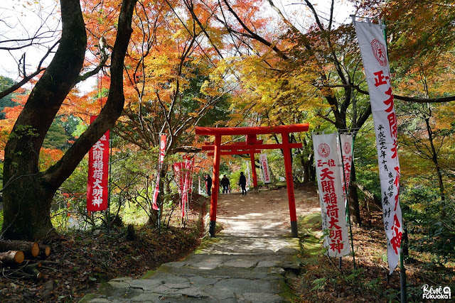 太宰府の紅葉、福岡
