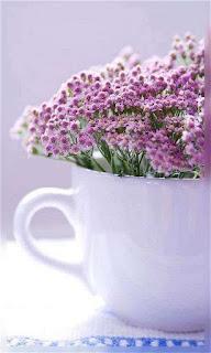 Flores lilas en una taza blanca fondos wallpaper para teléfono móvil resolución 480x800
