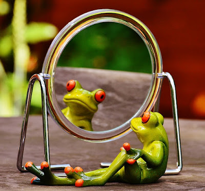 40 Knives Story: Frog Looking Into a Mirror