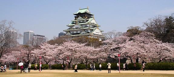 Pesona Nara, Bekas Ibu kota Jepang dengan 8 Situs Warisan Dunia