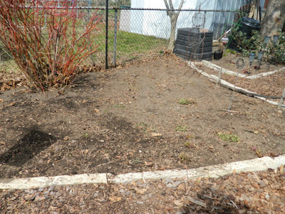 Toronto Etobicoke spring garden cleanup after Paul Jung Gardening Services