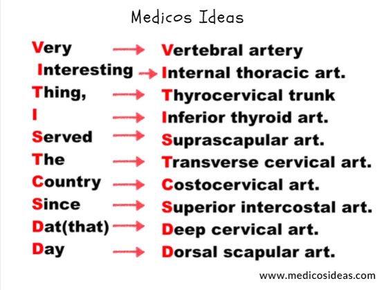 Subclavian Artery Branches Mnemonic | Subclavian artery anatomy