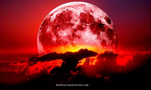 """Cómo armonizar la energía con la luna """"en sangre"""" - Finales de Julio"""