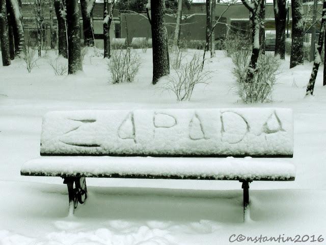 Zăpada - Fotografie explicativã pentru generaţiile viitoare - blog FOTO+IDEEA