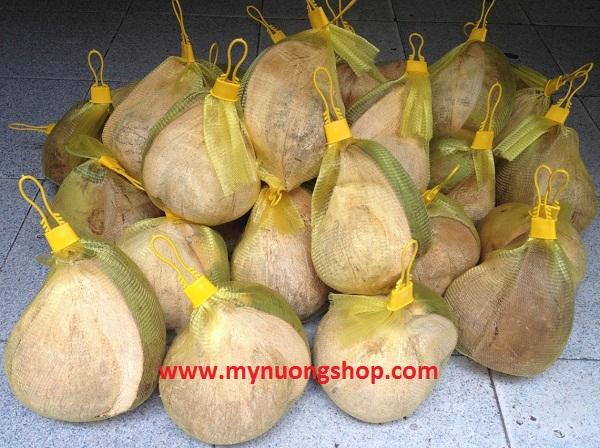 Bán dừa sáp cầu kè trà vinh giá rẻ quận 3 tp hcm