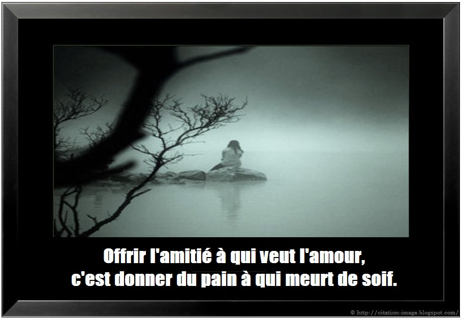 citations et proverbes d amour l amour et la haine