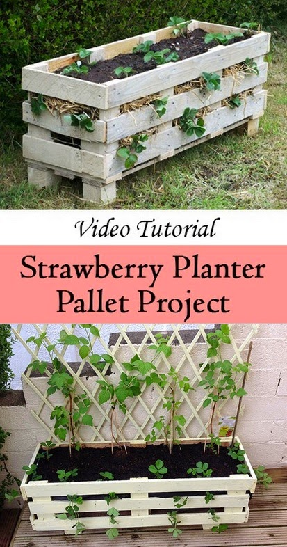 How to make a better Strawberry Pallet Planter #Pallet_gardening