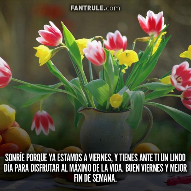 Buenos Días Viernes Bendecido y Feliz Imágenes de Flores