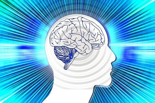 diez-por-ciento-cerebro-mito