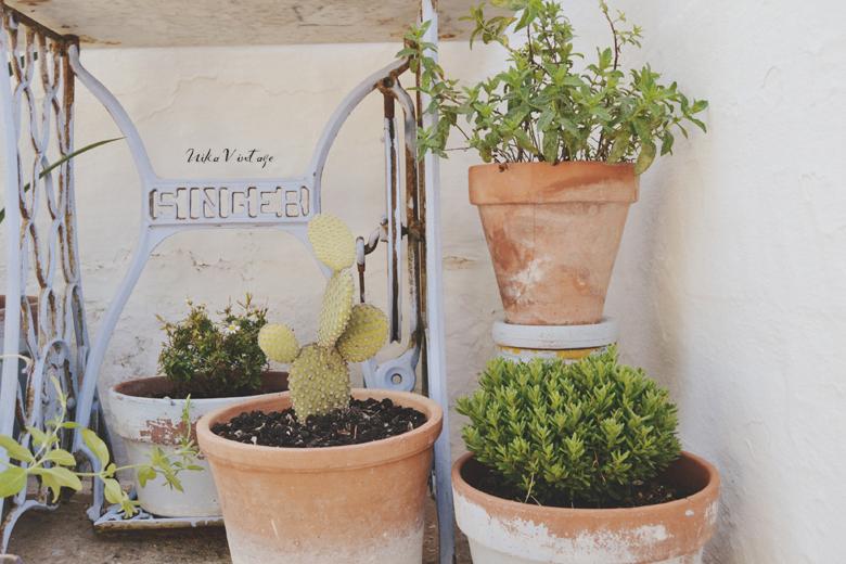 Te explico de manera práctica como poner bonito un rincón de exterior con plantas, será una viñeta sencilla, pero muy alegre y mediterránea