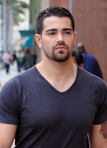 Jesse Metcalfe Tv Series Posters And Cast