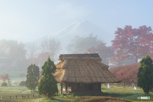 朝靄に浮かぶ紅葉と富士山~河口湖